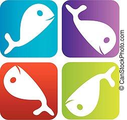 logo, dauphin, coloré
