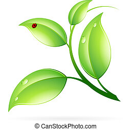 Logo Ecology Concept with Green Leaves and Ladybug