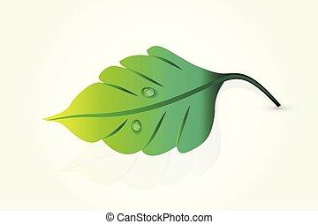 logo, feuille, santé, nature