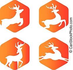 logo, hirsch