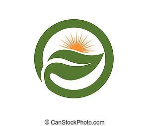 logo, ikona, słońce, wektor