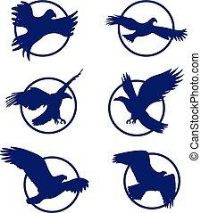 logo., jogo, ilustração, isolado, águia, vetorial, experiência., silueta, branca