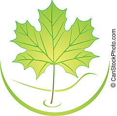 logo, liść