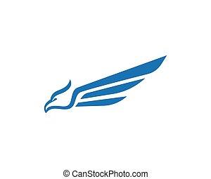 logo, orzeł, ptak, szablon, sokół