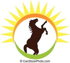 logo, paarde