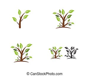 logo, plante, vecteur, écologie, nature
