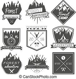 logo, satz, elemente, weinlese, etiketten, heiligenbilder, freigestellt, lager, embleme, vektor, design, wald, hintergrund, weißes, style., abzeichen