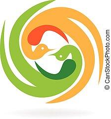 logo, vecteur, oiseaux
