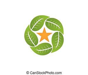 logo, vektor, blad, template., natur