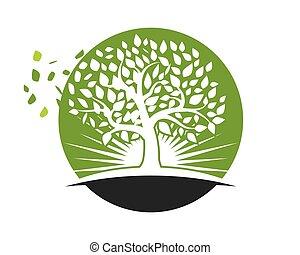 logos, foglia, natura, albero, elemento, vettore, icona
