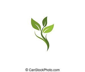 Logos of green Tree leaf
