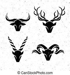 logos, rohatý, animals.