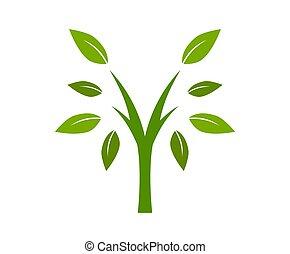 logotipo, 2, disegno, albero