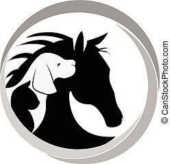 logotipo, cão, gato, e, cavalo