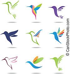 logotipo, colibrí