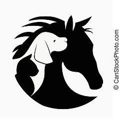 logotipo, de, cão, gato, e, cavalo