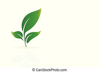 logotipo, ecologia, mette foglie, natura