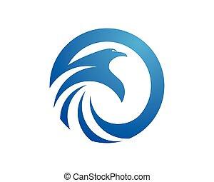 logotipo, halcón, plantilla