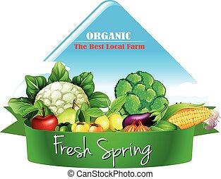 logotipo, legumes, desenho, muitos