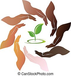 logotipo, pianta, intorno, mani