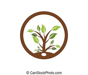 logotipo, pianta, vettore, ecologia, natura