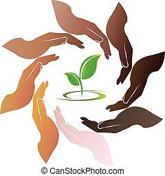 logotipo, planta, ao redor, mãos