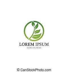 logotipo, sano, naturale, foglia