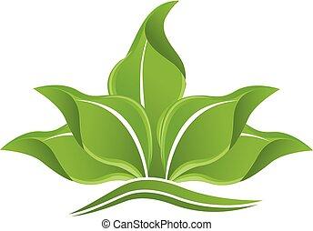 logotipo, verde, folheia