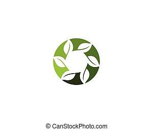 logotipo, vettore, ecologia, natura, elemento