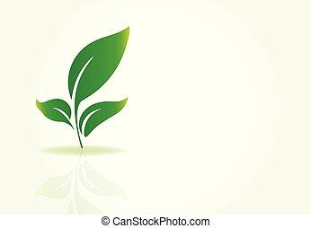 logotipo, vettore, mette foglie, natura
