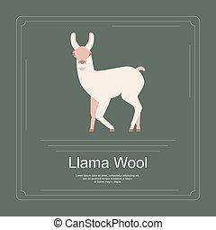 Logotype of llama wool. with llama in modern flat design....