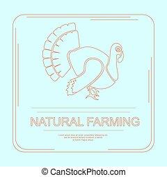 Logotype of turkey in flat design