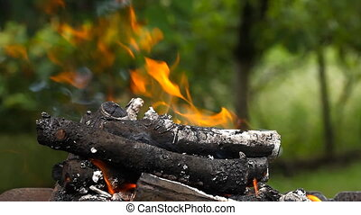 Logs burn with a bright flame