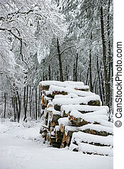 Logs covered in snow