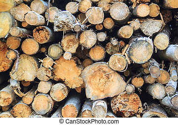 Logs cuts prepared for fireplace. Wall of stacked wood logs as background