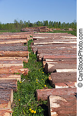 Logs for building