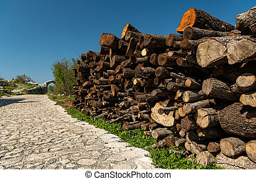 logs lying beside a street on a sunny day