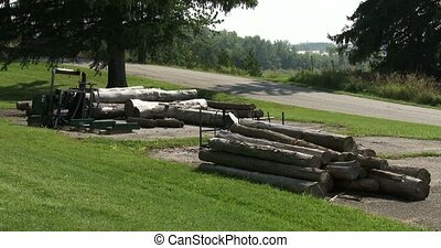 Logs of wood stacked