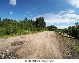 logs off road