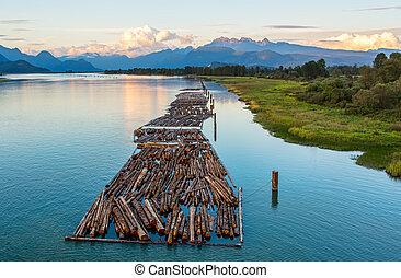 Logs on River and Distant Mountains - Distant mountains with...