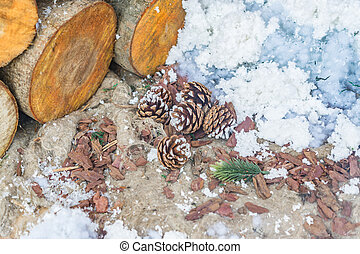 logs, pine cones and snow on the ground
