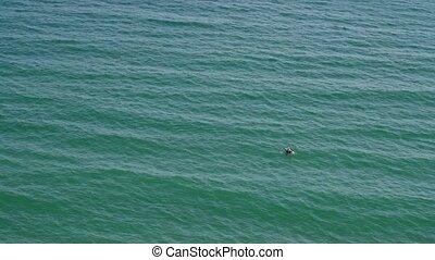 loin, air, sea., homme, matelas, nage