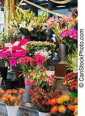 loja, colorido, flores, flor, rua