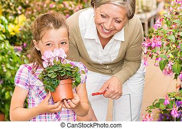 loja jardim, criança, com, vó, cheiro, cyclamen