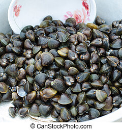 lokale markt, clam, thailand