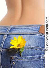 lomme, blomst, jeans, kvindelig, gul
