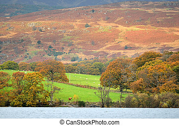 lomond, image, ecosse, loch, stockage