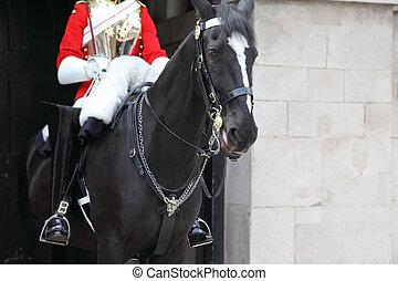 LONDON - JUNE 7: Black horse under the guardsman in red coat and black jackboot June 7, 2010 in London.