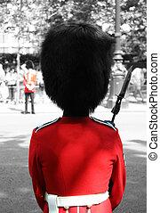 Queen's Soldier