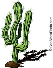 lone cactus among the rocks and shadow drawn a sketch